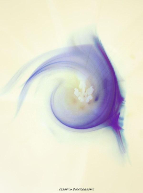 Fluide ArtDesign 4