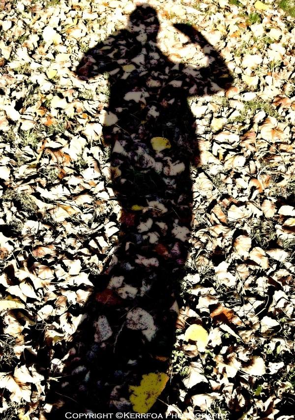 Dans mon costume de feuilles