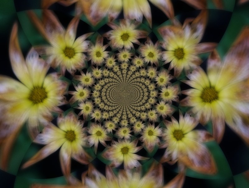Kaleido Flowers