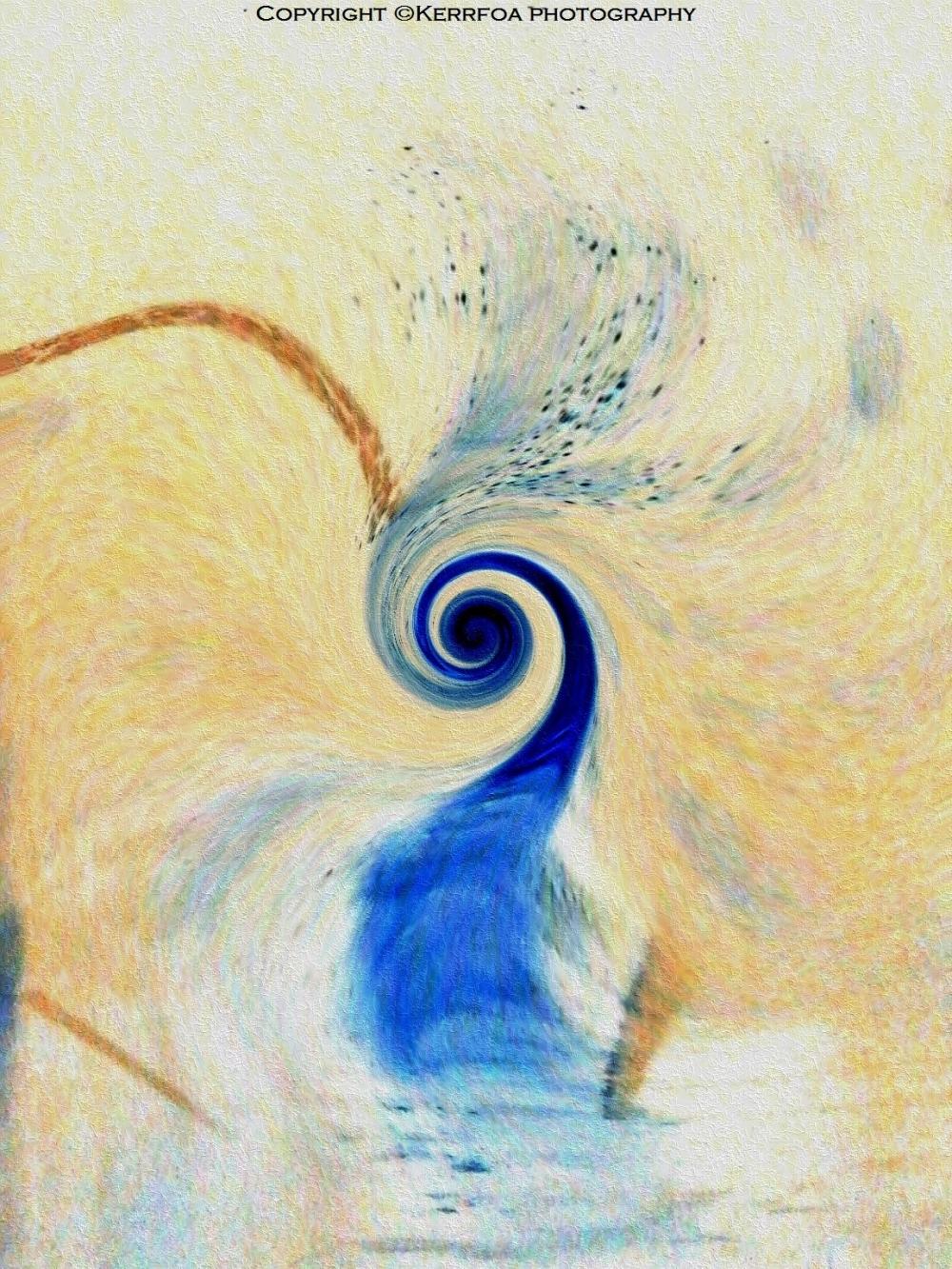 L'oiseau de  l 'eau