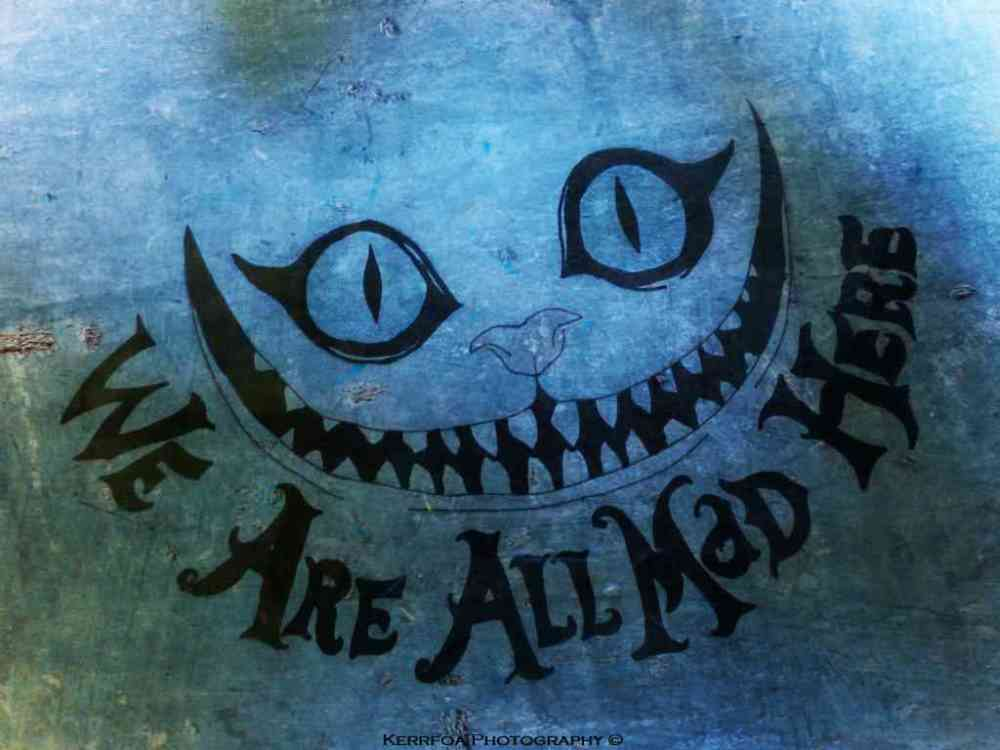 Drawing We Are All Mad Here !