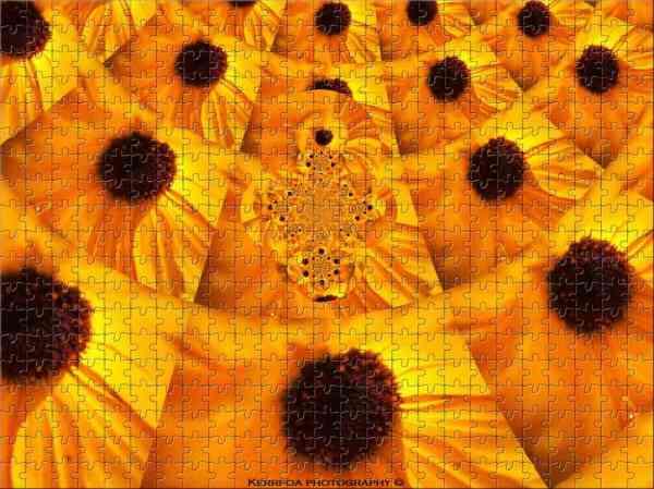 Kaleido 3 puzzle