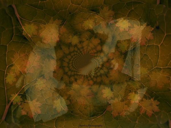 The Women of Autumn
