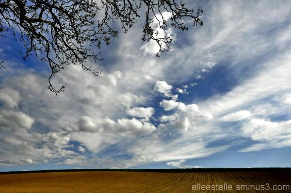 infinite sky ...