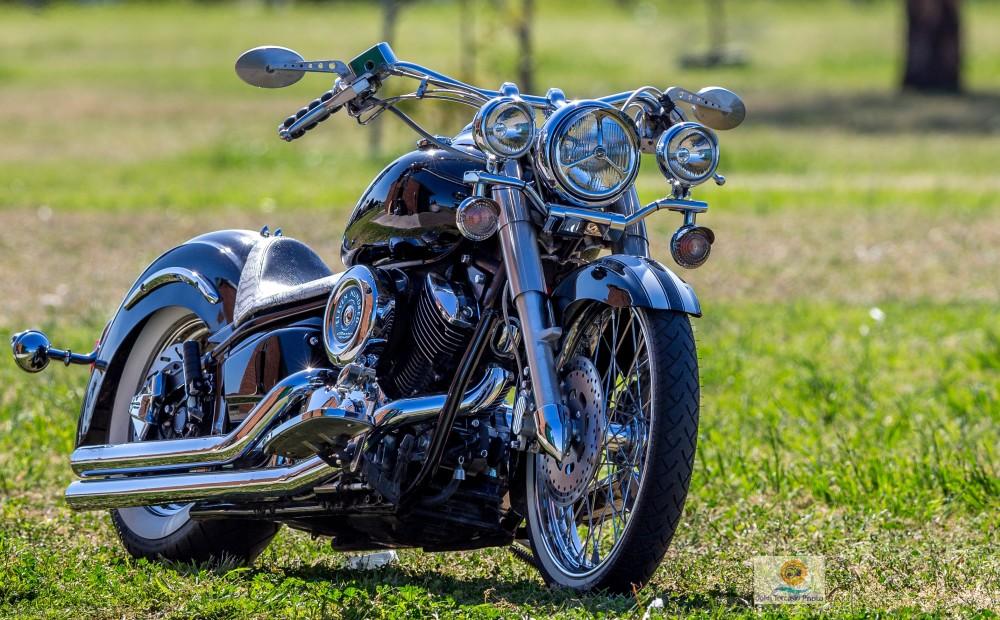 Harley-Davidson by John Torcasio