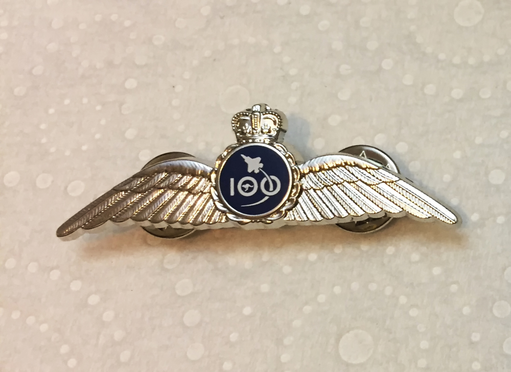 Air Force 100 Double Wings Silver Pin