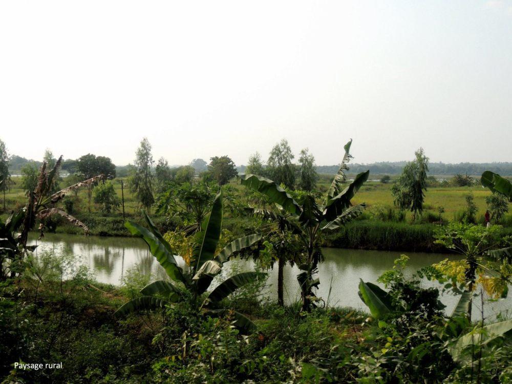 Myanmar 84