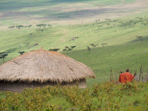 Au pays des Masaïs