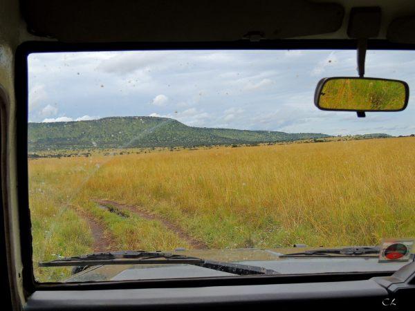 Vue de jeep