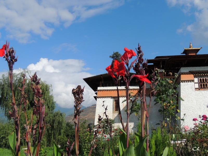 Dzong de Semtokha