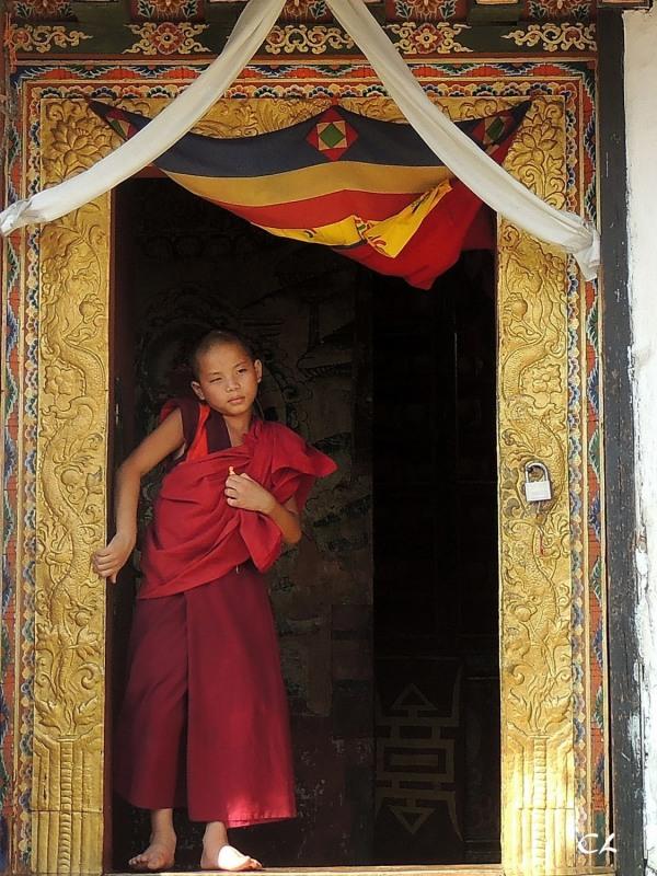 temple de Chime Lhakhang