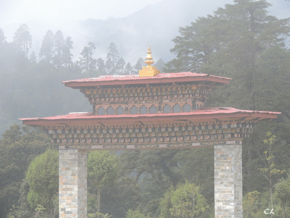 col de Dochu La dans le brouillard