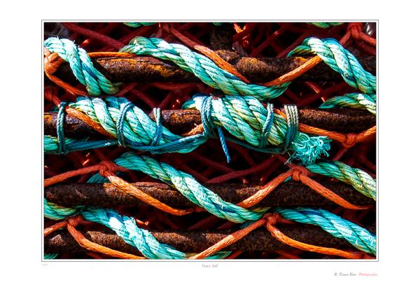 Crab Nets