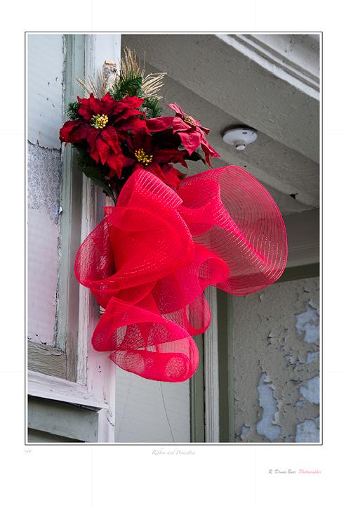 Ribbon and Poinsettia