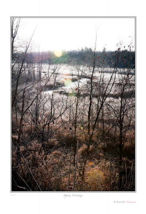 Hwy 38 Landscape