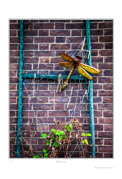 Garden Antics