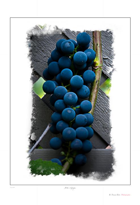 Joe's Grapes