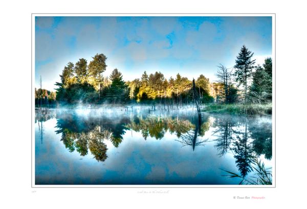 Misted Pond