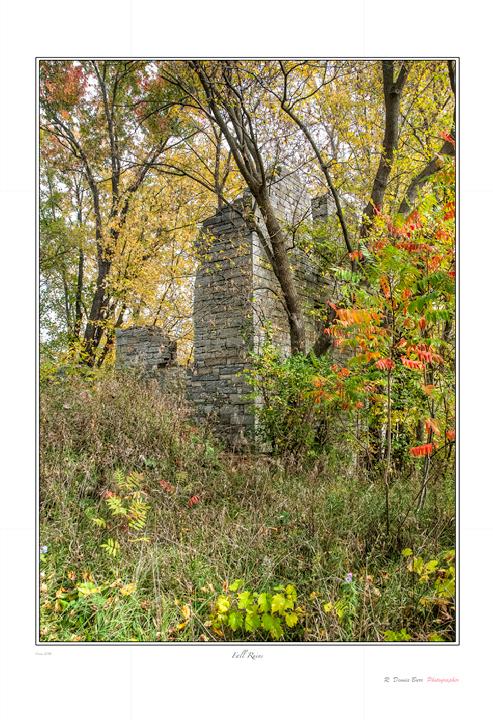 Fall Ruins