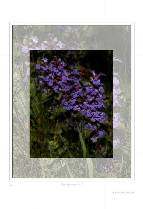 Purple Renaissance No. 2