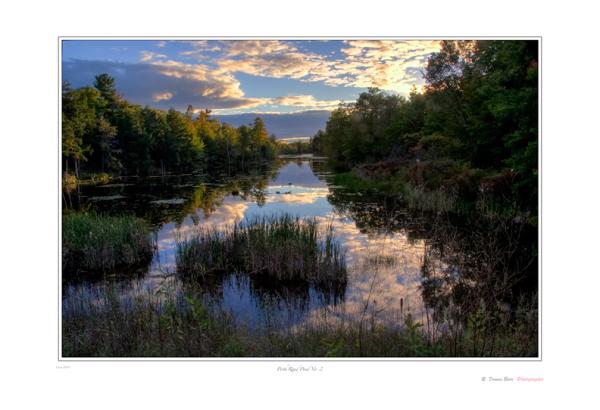 Perth Road Pond No. 2