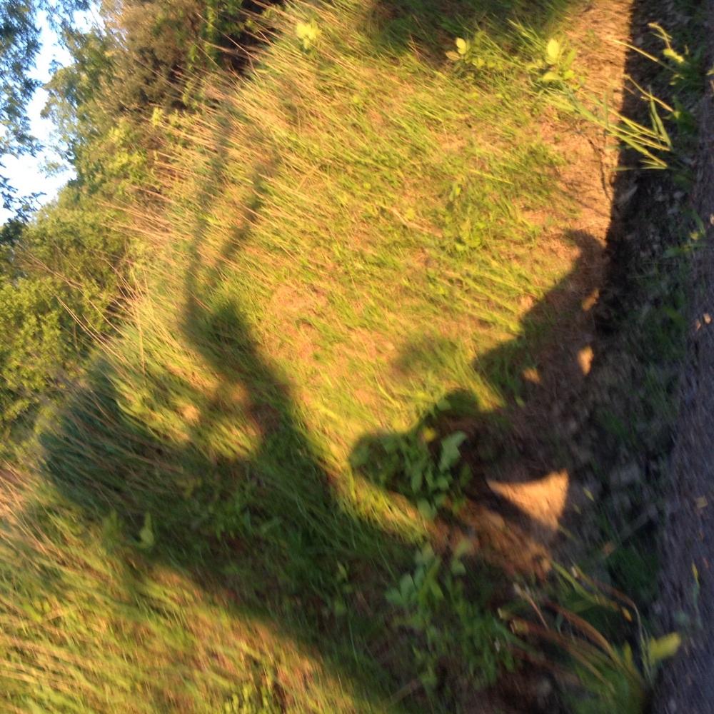 Capturing my shadow