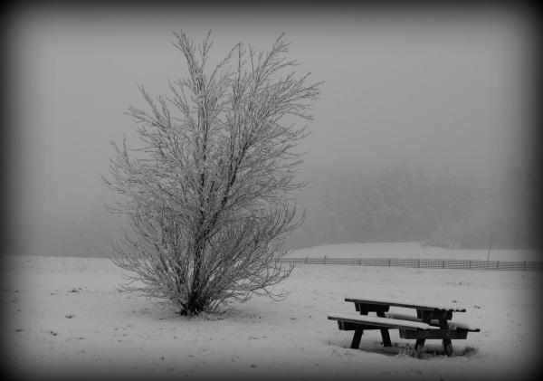 Paysage de neige#2