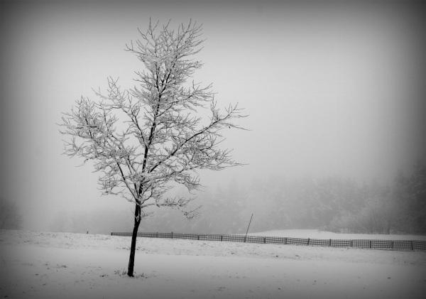Paysage de neige#3