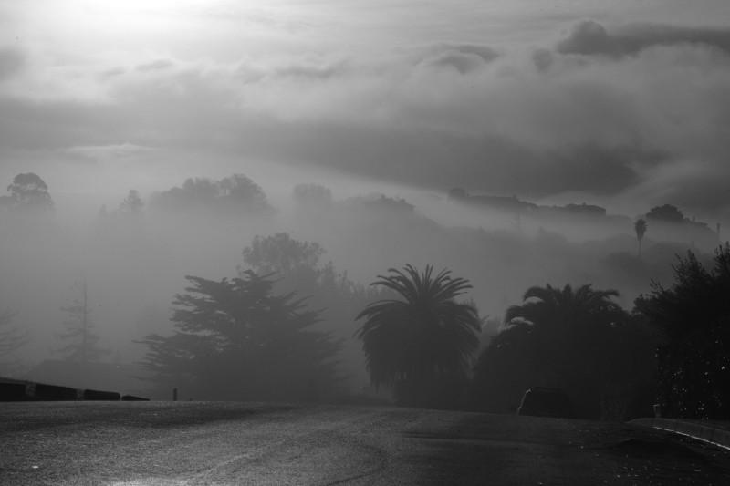 Sunrise Through Tam Valley Fog
