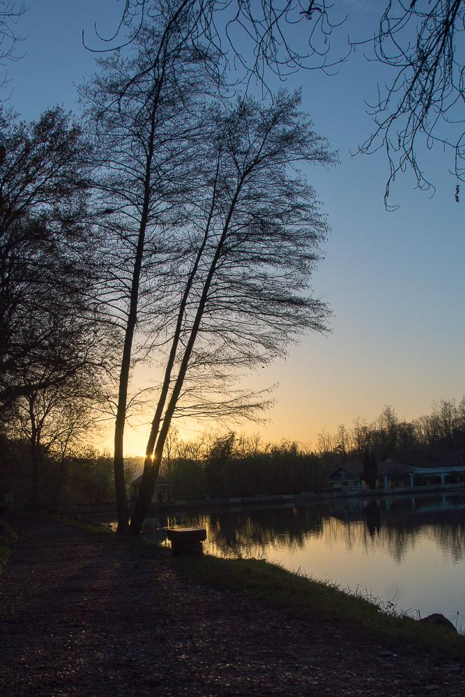 fin de journée sur l'étang