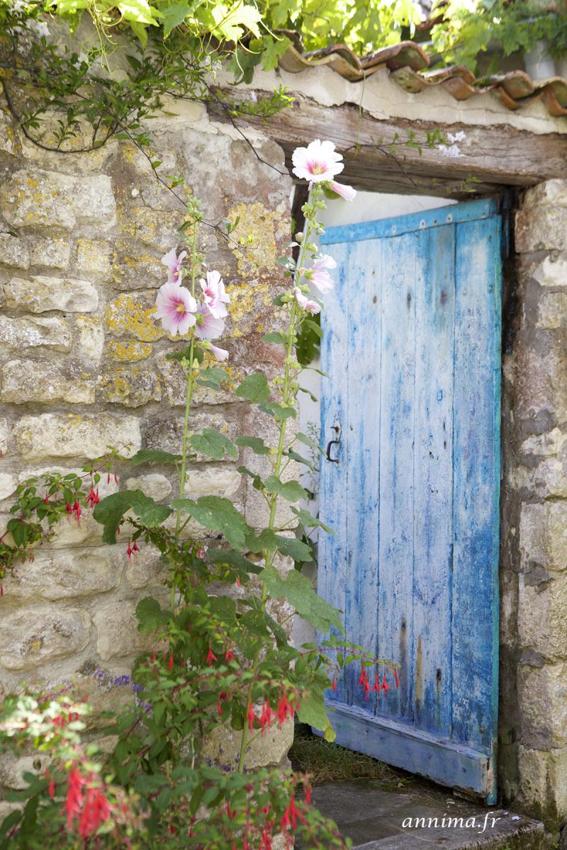 door, blue, flowers