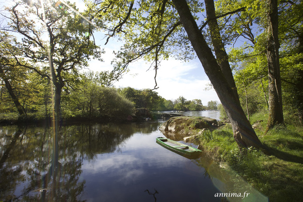 La vienne, River, France