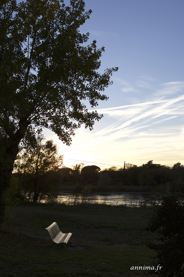 Bench, River