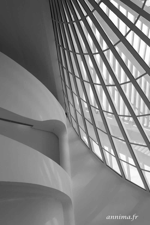 Musée de demain, Museum