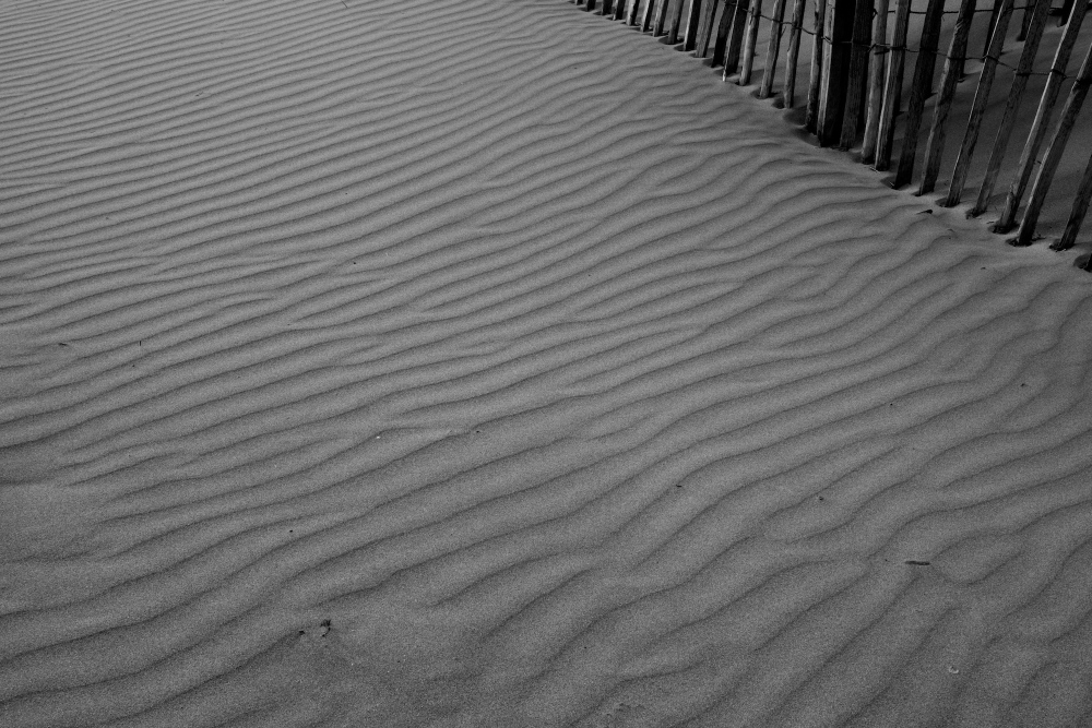 Ripple marks, sand, beach, wind