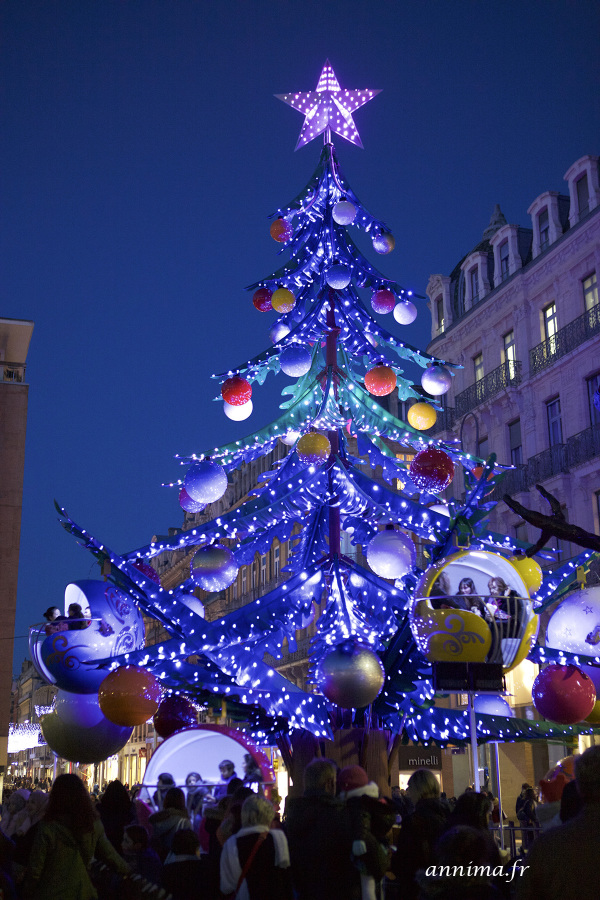 Xmas, street, Toulouse, lights, marygoround, tree