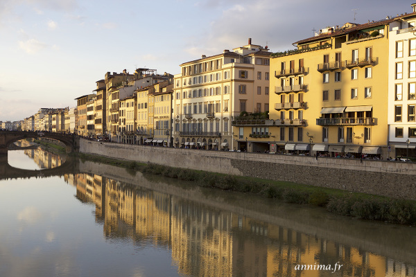 Florence, brigde, golden hour, Arno, river
