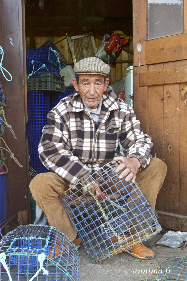 Portrait, fisherman, portugal