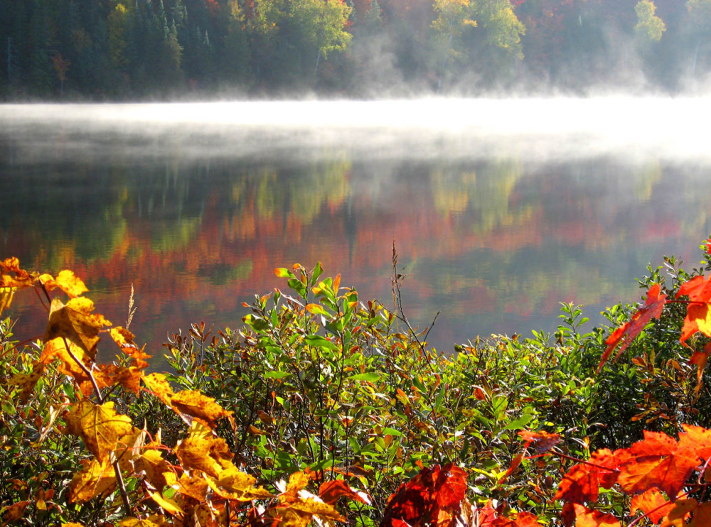 bright fog on lake in fall