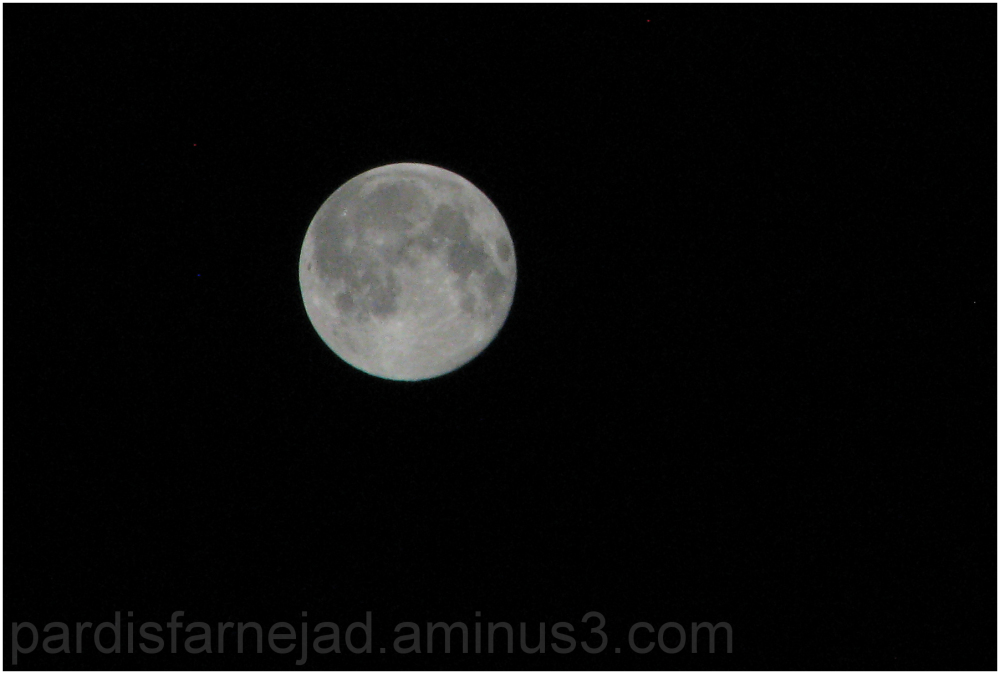 .:: Blue Moon ::.