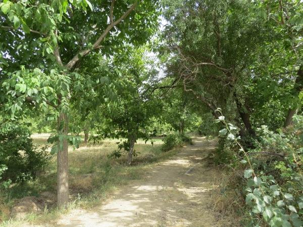 Irane, روستای ایرانه