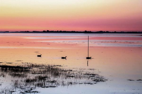 Un coucher de soleil dans les marais de st armel