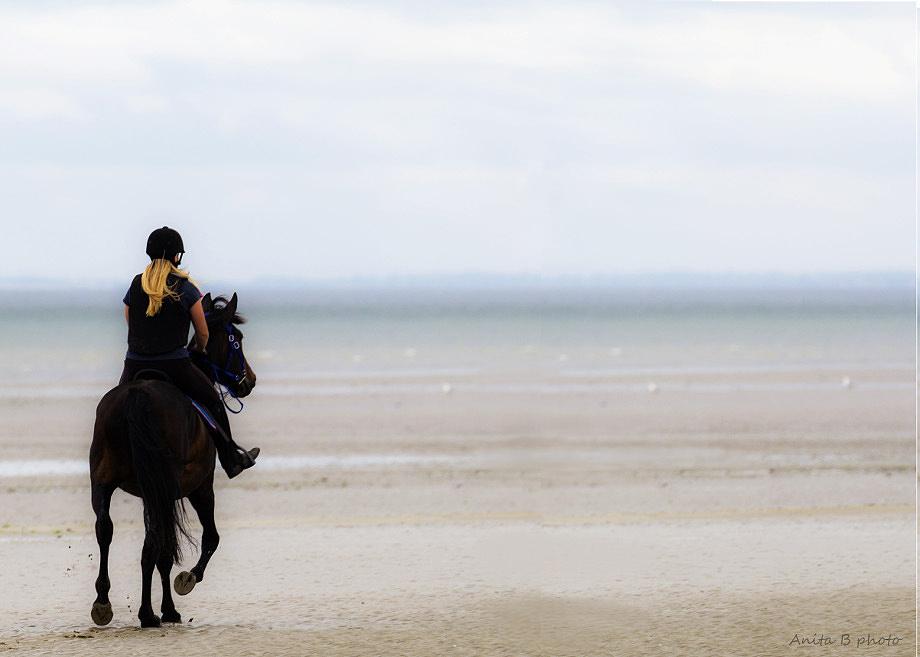 Sur les chemins du Cotentin ... !
