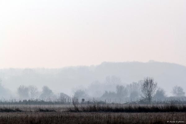 Un matin de brume, de gel et de glace ... !
