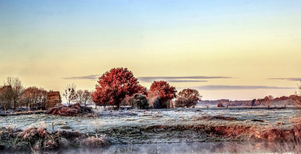 Un matin de brume et de gel ... !