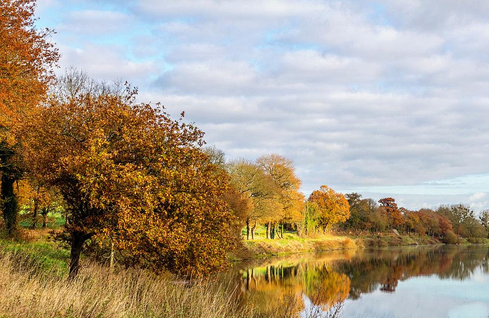 Un si bel automne 2 ... !