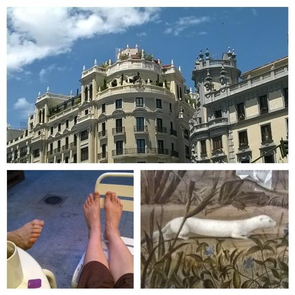 Hiszpania (3): Museos...