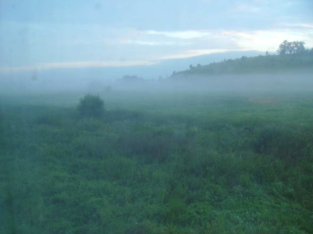 Fog , fog ....