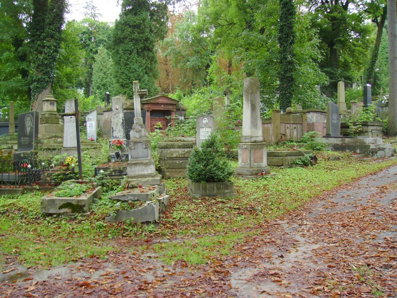 On  the  Lychakivske  cemetery  in  Lviv