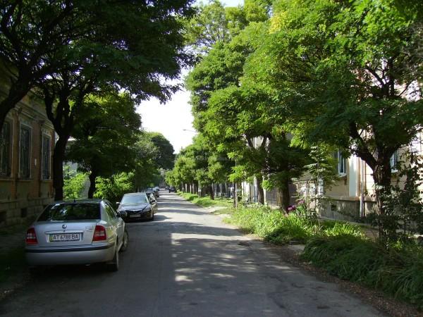 Kopernik  Street  in  Ivano - Frankivsk